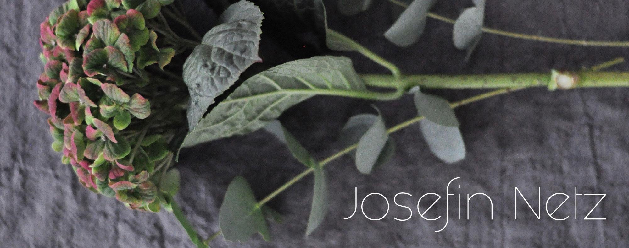 Josefin Netz - Inredning, Renovering, Trädgård