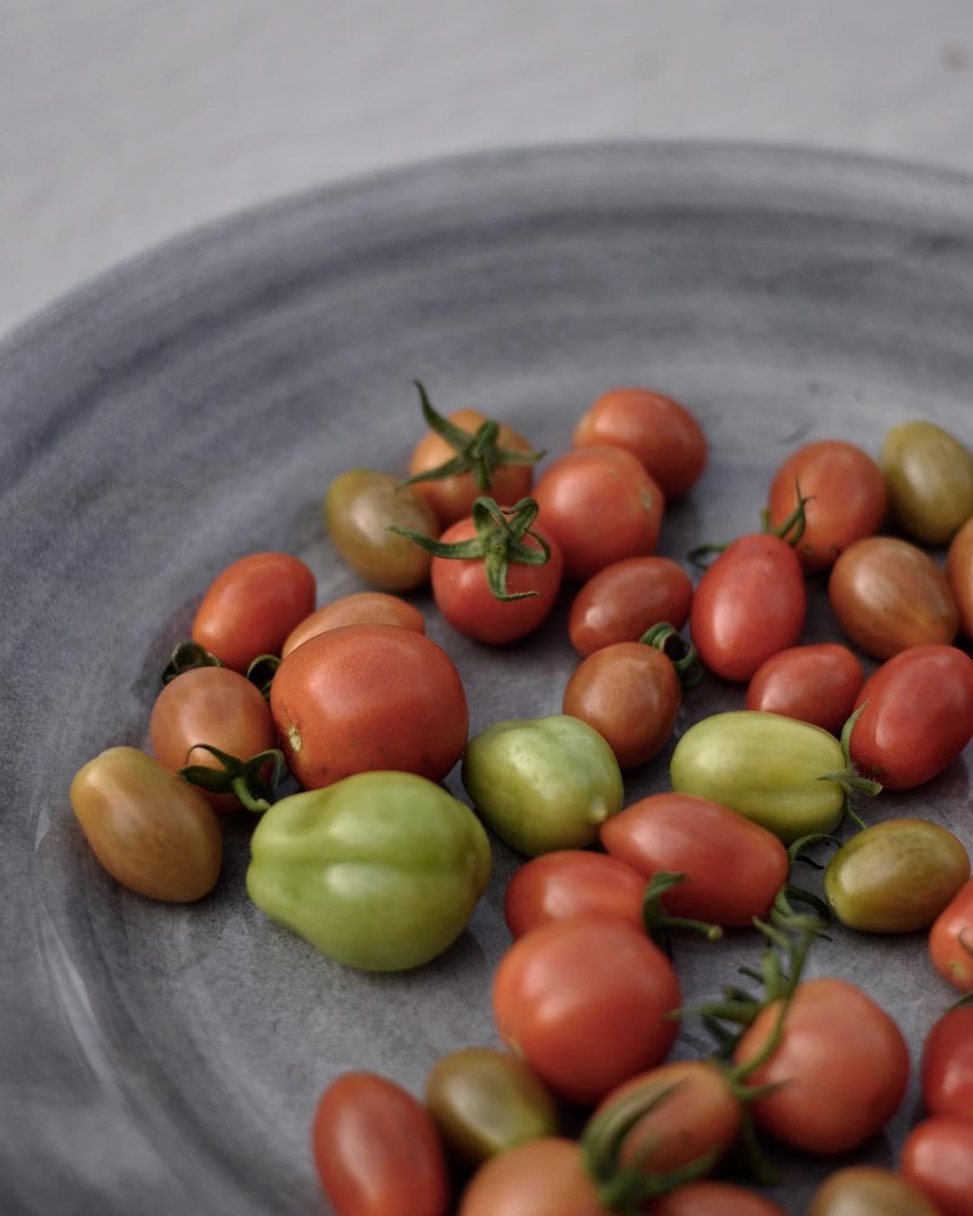 Skrdar fortfarande massor av tomater! greenhouse
