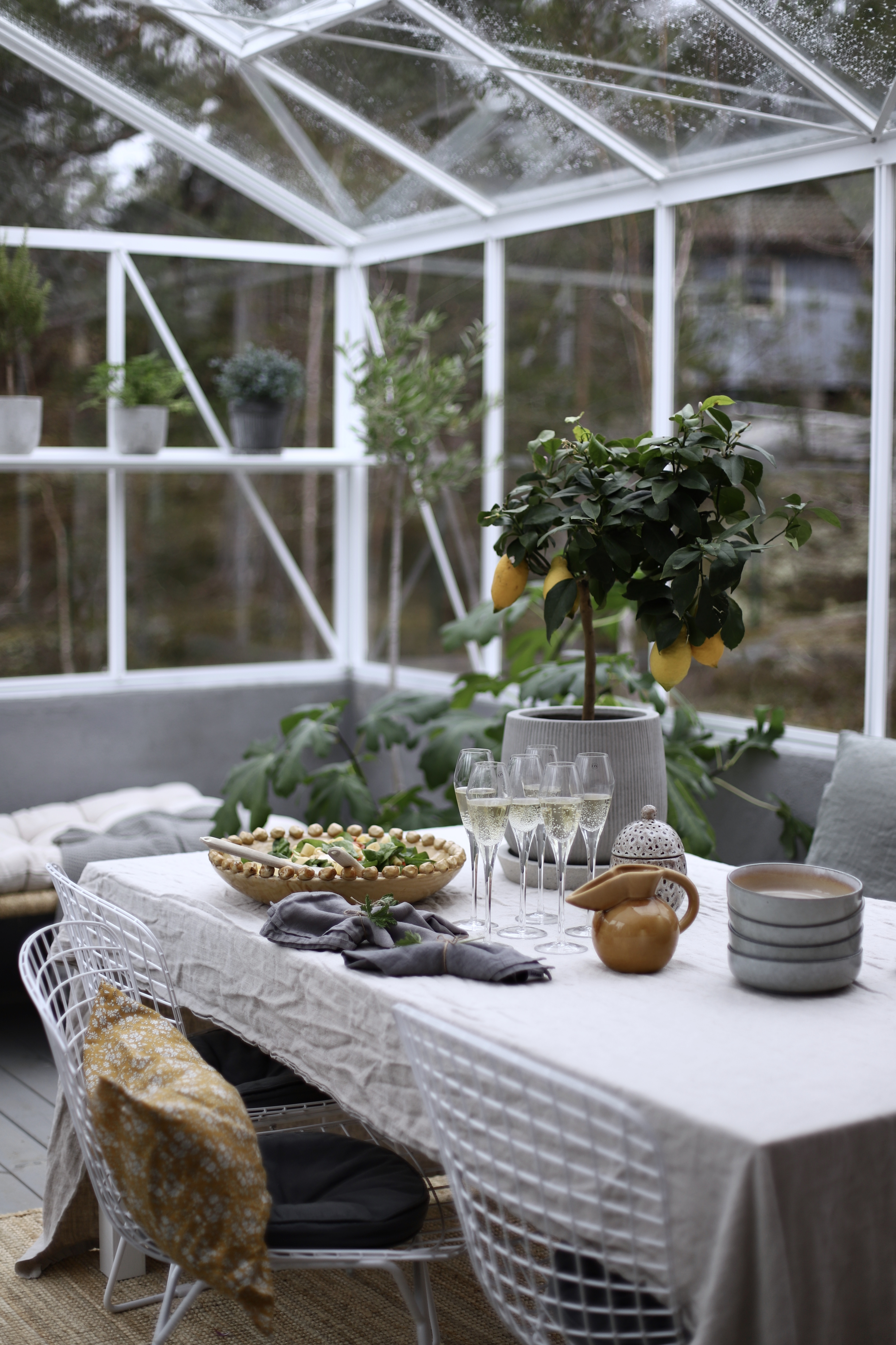 Sommar i växthuset